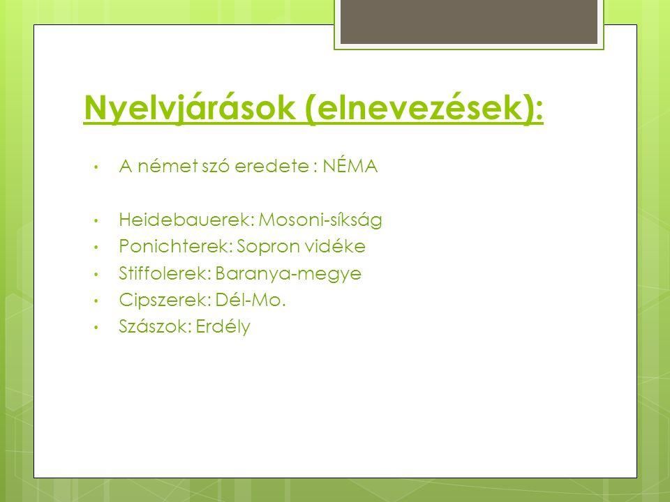 Nyelvjárások (elnevezések):