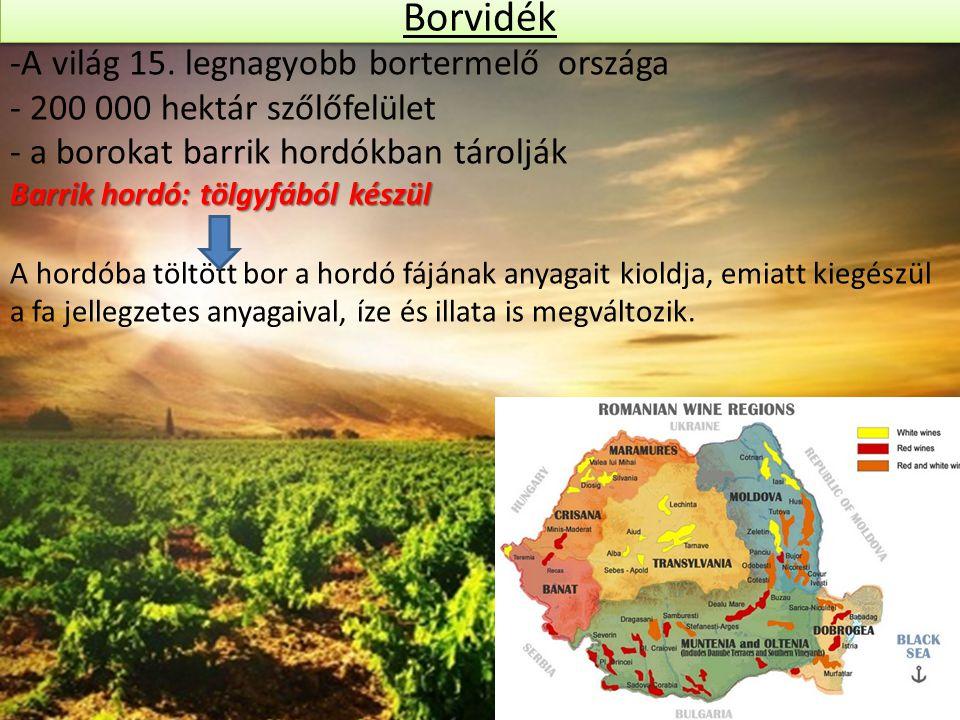 Borvidék -A világ 15. legnagyobb bortermelő országa