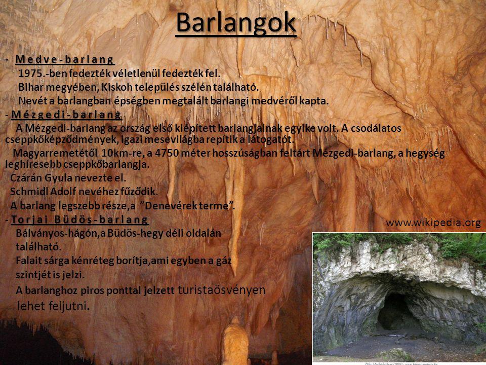 Barlangok lehet feljutni. www.wikipedia.org - Medve-barlang