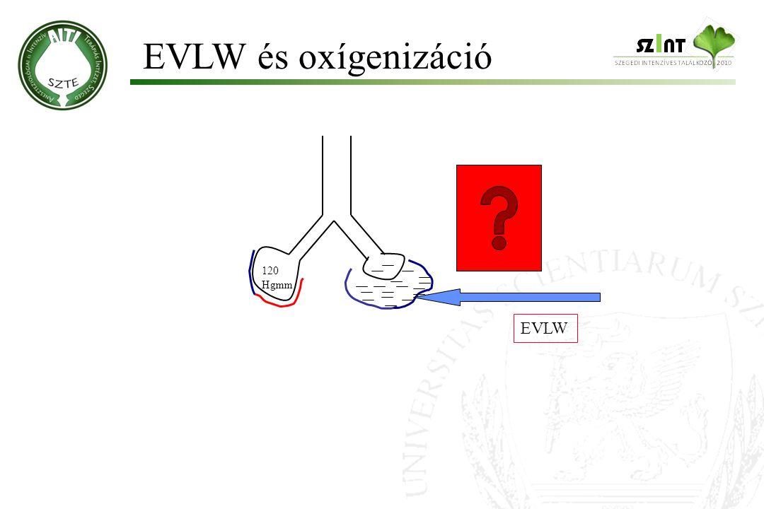 EVLW és oxígenizáció 120 Hgmm EVLW Molnár '99