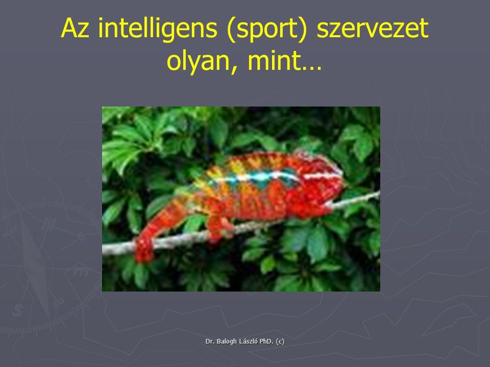 Az intelligens (sport) szervezet olyan, mint…