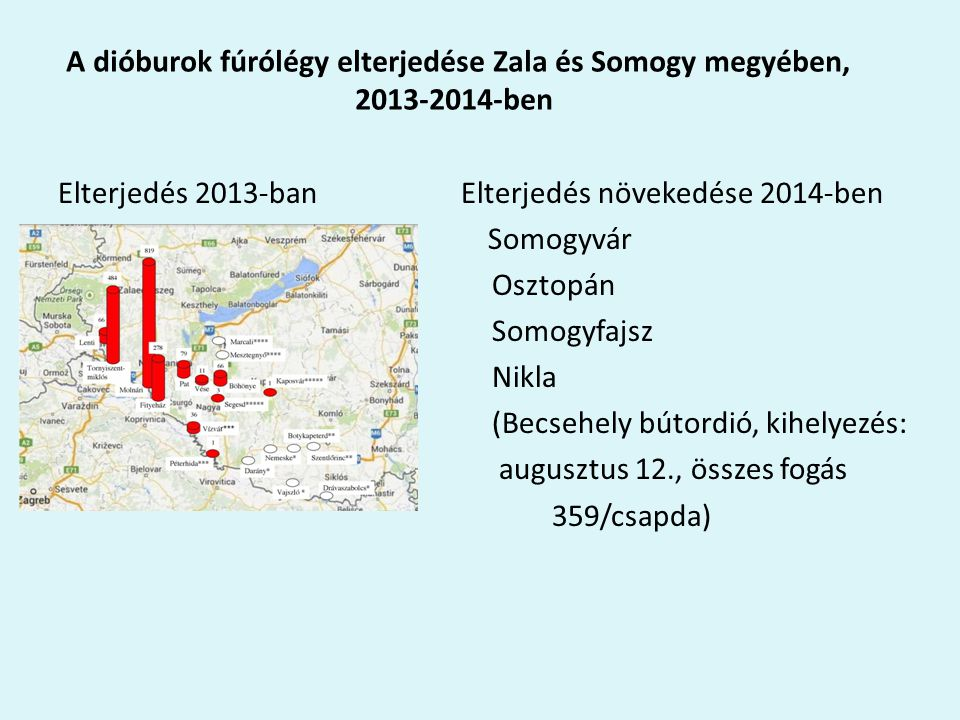 A dióburok fúrólégy elterjedése Zala és Somogy megyében, 2013-2014-ben