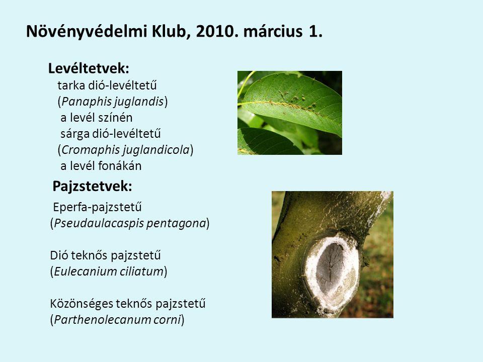 Növényvédelmi Klub, 2010. március 1.
