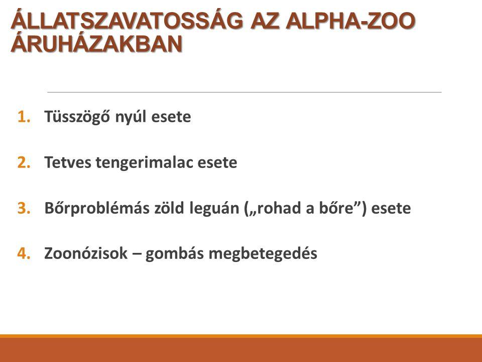 ÁLLATSZAVATOSSÁG AZ ALPHA-ZOO ÁRUHÁZAKBAN