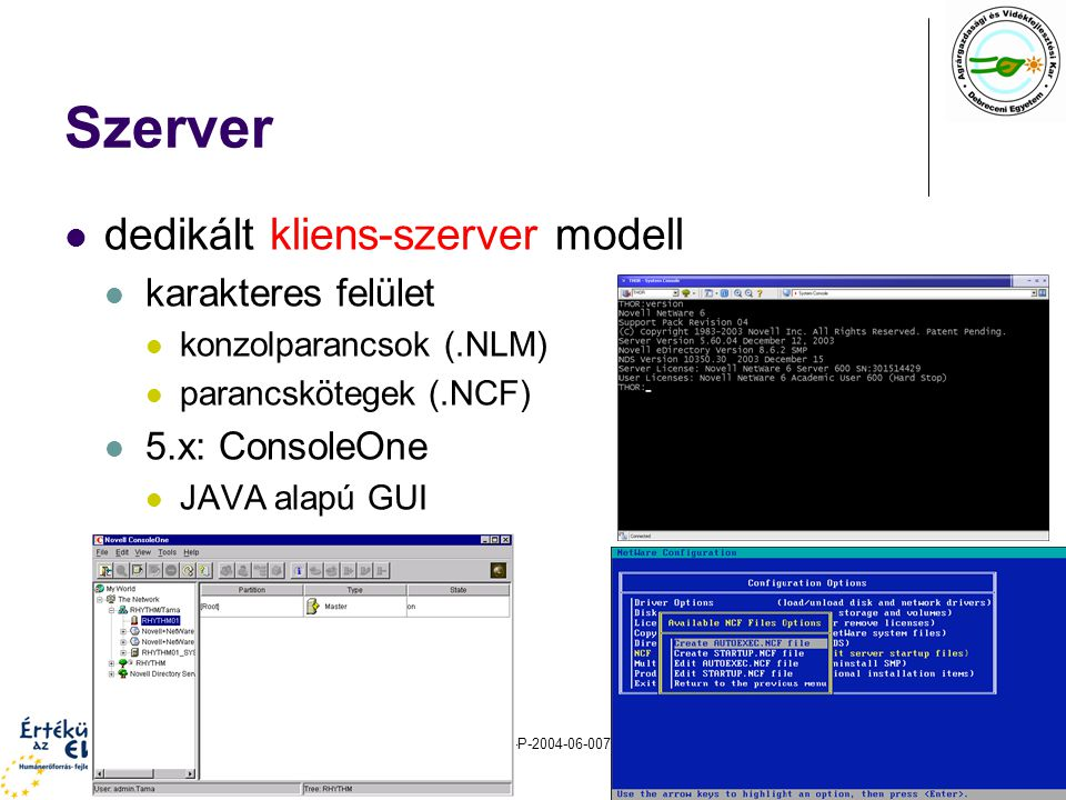 Szerver dedikált kliens-szerver modell karakteres felület