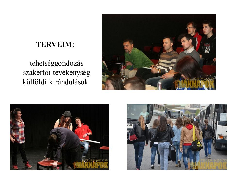 TERVEIM: tehetséggondozás szakértői tevékenység külföldi kirándulások