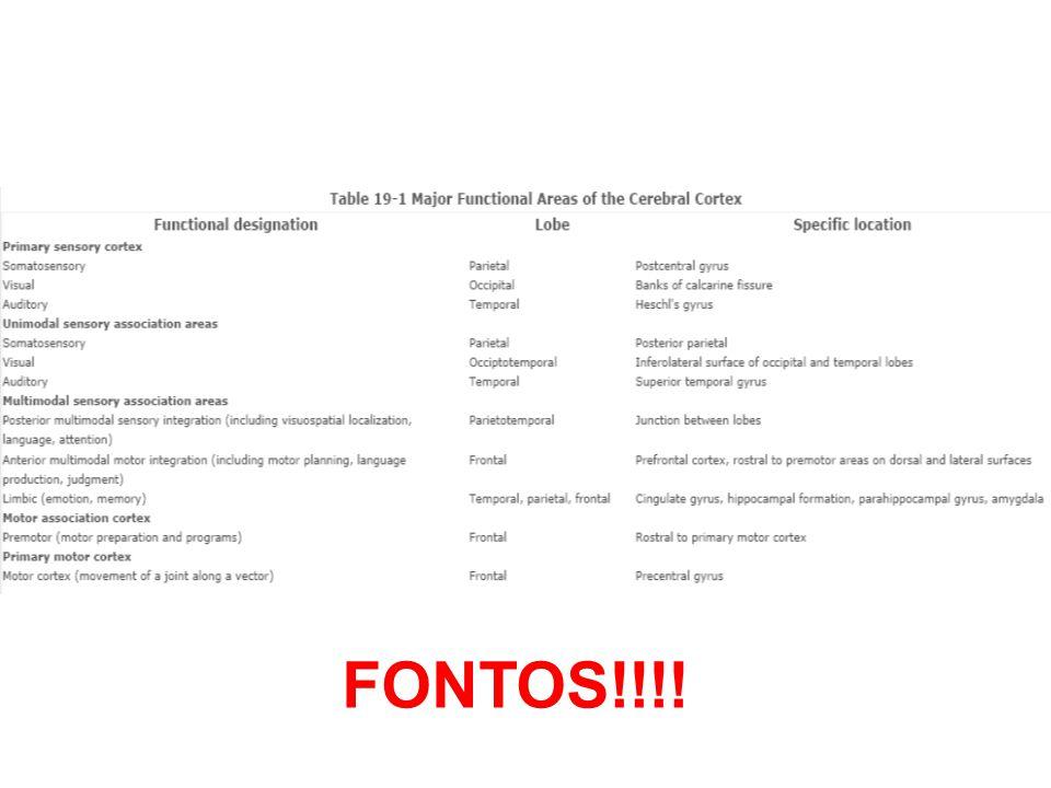 FONTOS!!!!