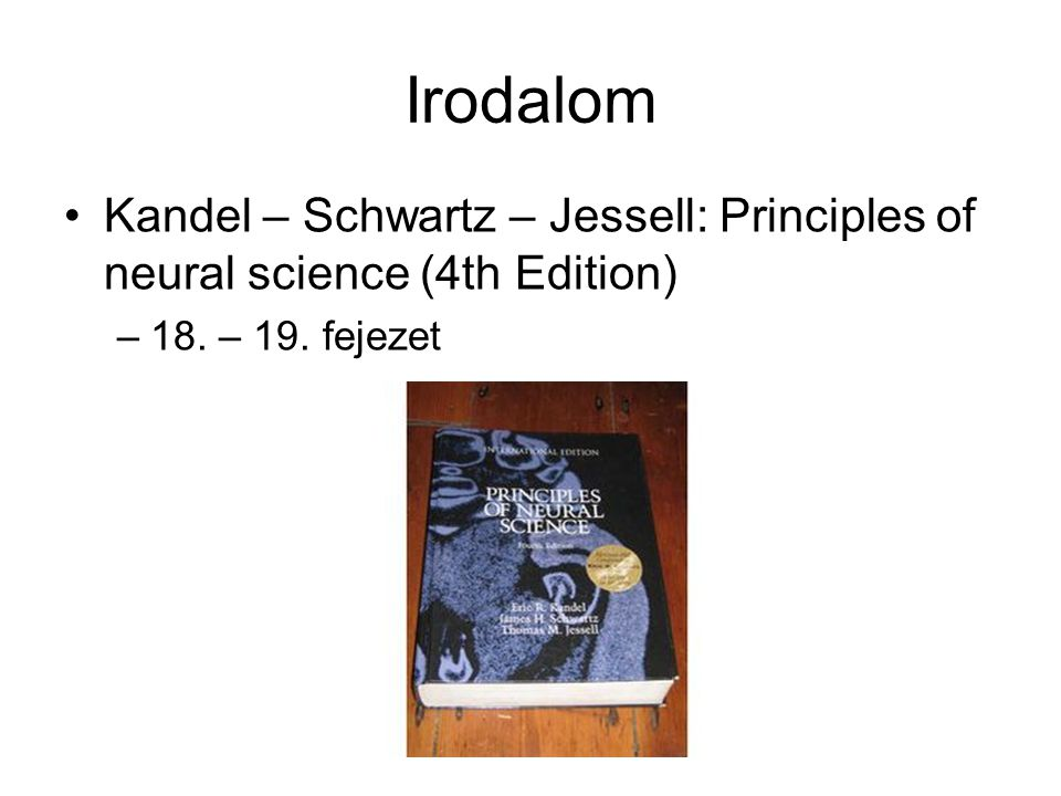 Irodalom Kandel – Schwartz – Jessell: Principles of neural science (4th Edition) 18. – 19. fejezet