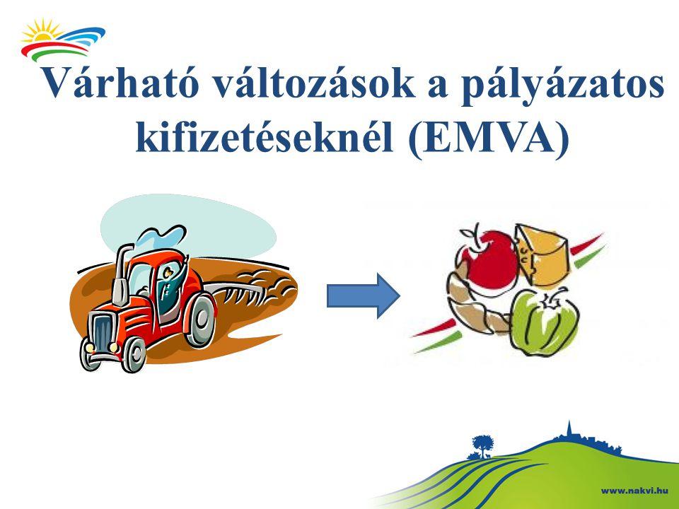 Várható változások a pályázatos kifizetéseknél (EMVA)