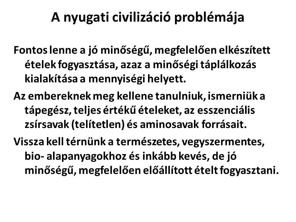 A nyugati civilizáció problémája
