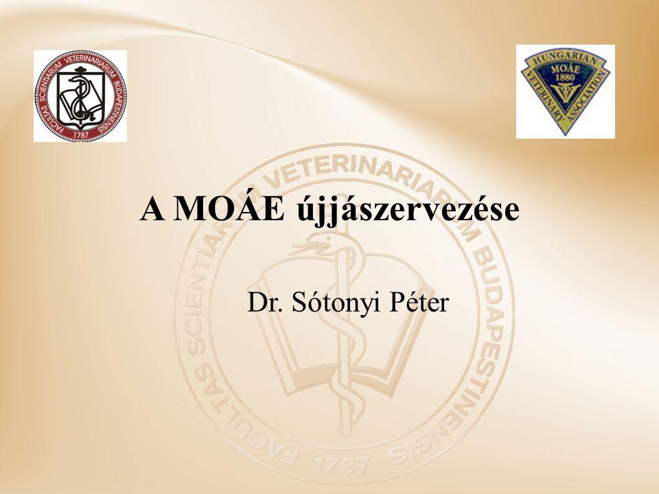 A MOÁE újjászervezése Dr. Sótonyi Péter