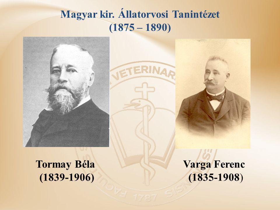 Magyar kir. Állatorvosi Tanintézet (1875 – 1890)