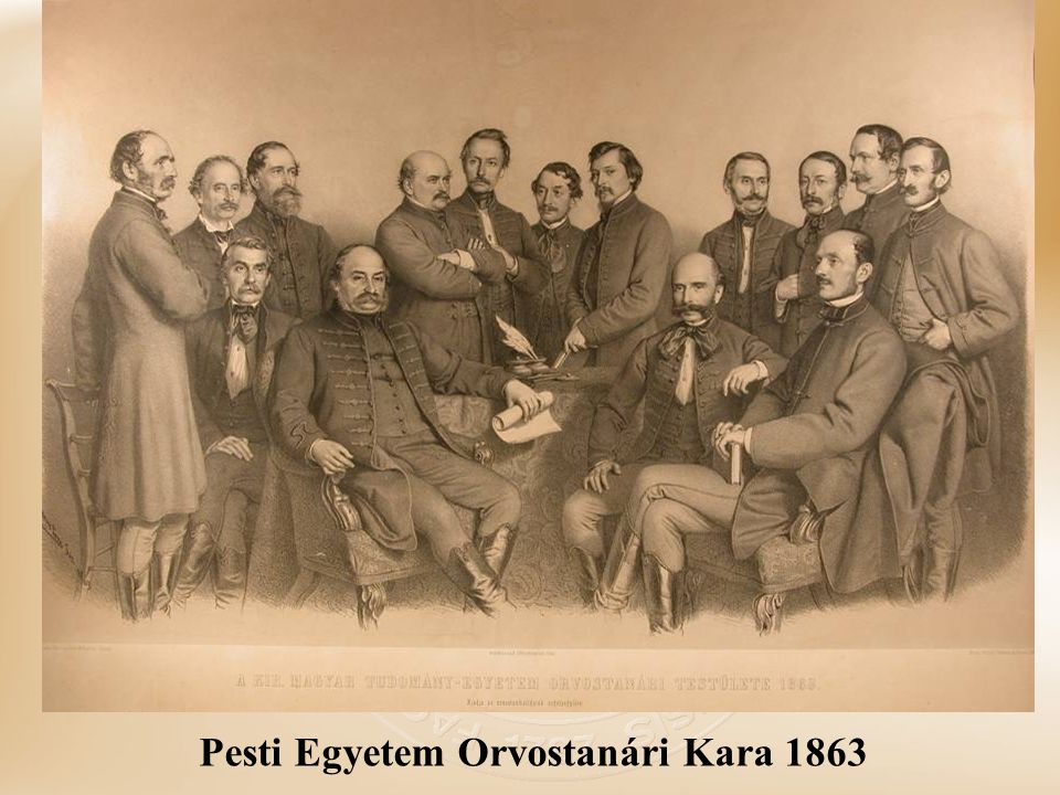 Pesti Egyetem Orvostanári Kara 1863