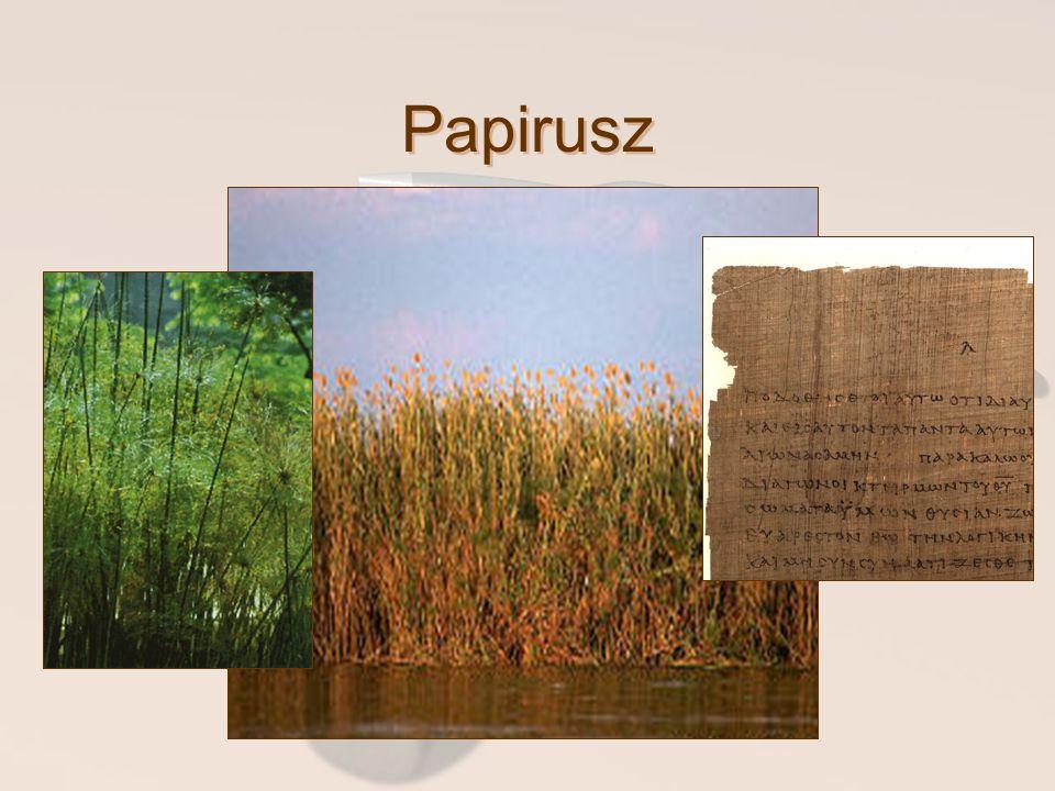 Papirusz Az Újszövetségi kéziratokat különböző anyagokra írták.