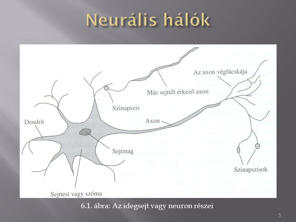 6.1. ábra: Az idegsejt vagy neuron részei