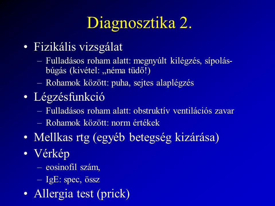 Diagnosztika 2. Fizikális vizsgálat Légzésfunkció