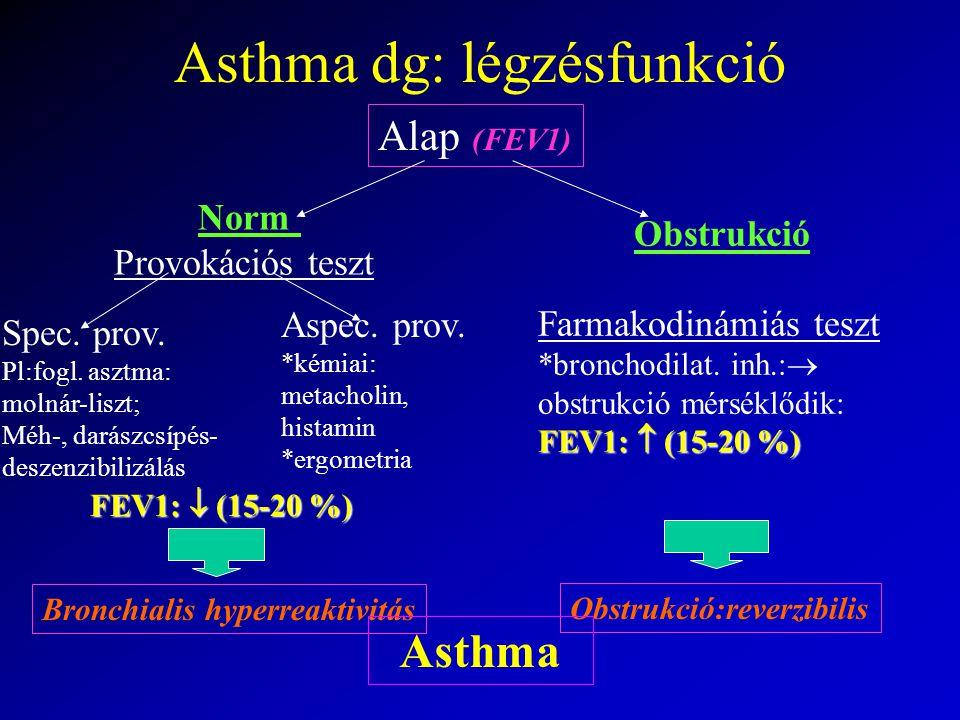Asthma dg: légzésfunkció