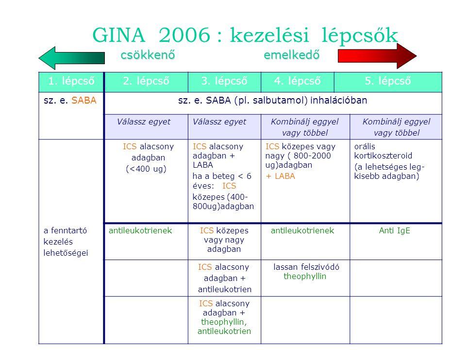 GINA 2006 : kezelési lépcsők