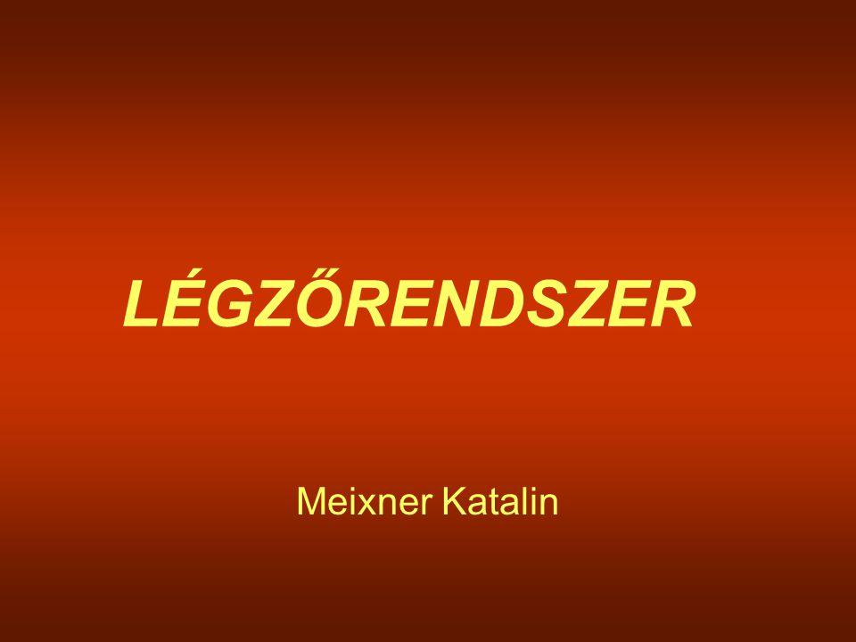 LÉGZŐRENDSZER Meixner Katalin