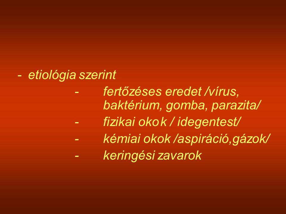 - etiológia szerint - fertőzéses eredet /vírus, baktérium, gomba, parazita/ - fizikai oko k / idegentest/