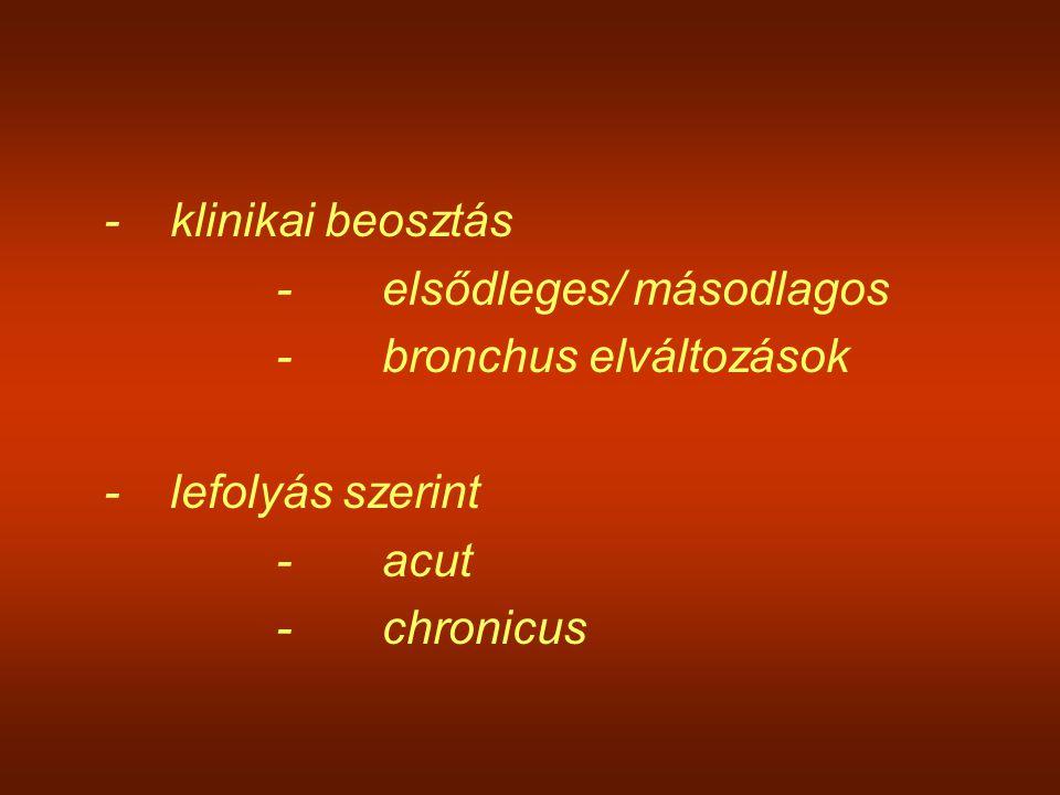 - klinikai beosztás - elsődleges/ másodlagos. - bronchus elváltozások. - lefolyás szerint. - acut.