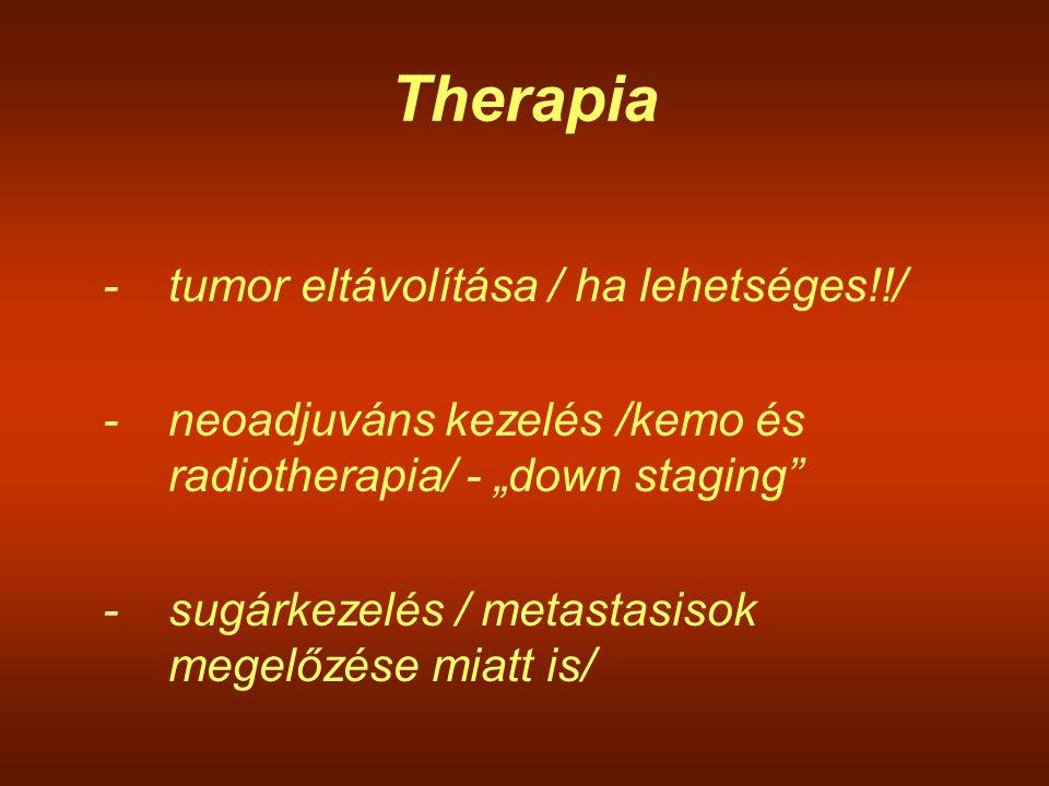 Therapia - tumor eltávolítása / ha lehetséges!!/
