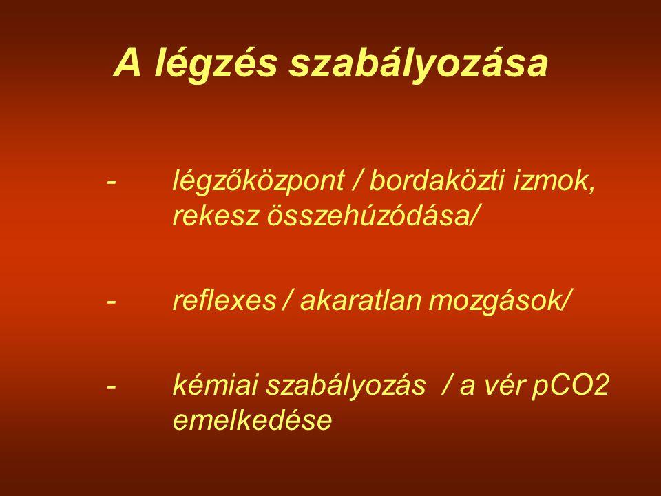 A légzés szabályozása - légzőközpont / bordaközti izmok, rekesz összehúzódása/ - reflexes / akaratlan mozgások/