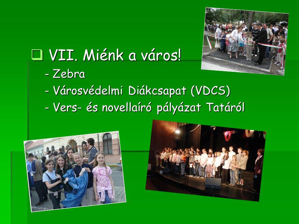 VII. Miénk a város! - Zebra - Városvédelmi Diákcsapat (VDCS)
