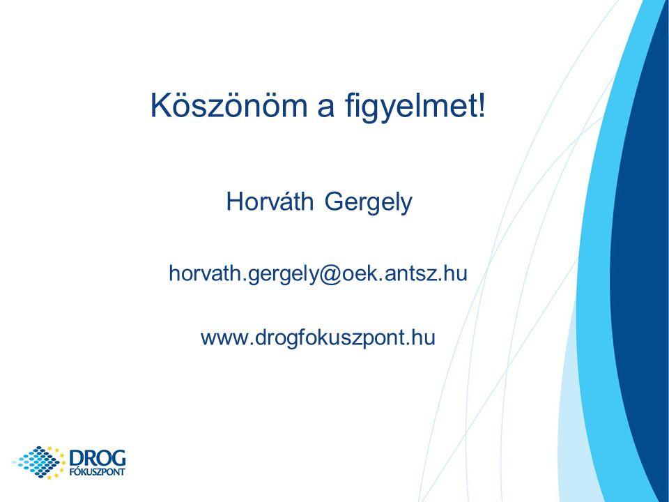 Köszönöm a figyelmet! Horváth Gergely horvath.gergely@oek.antsz.hu