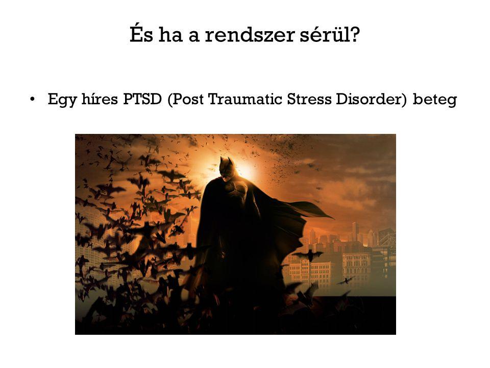 És ha a rendszer sérül Egy híres PTSD (Post Traumatic Stress Disorder) beteg