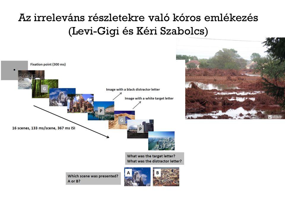 Az irreleváns részletekre való kóros emlékezés (Levi-Gigi és Kéri Szabolcs)