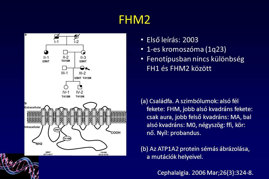 FHM2 Első leírás: 2003 1-es kromoszóma (1q23)