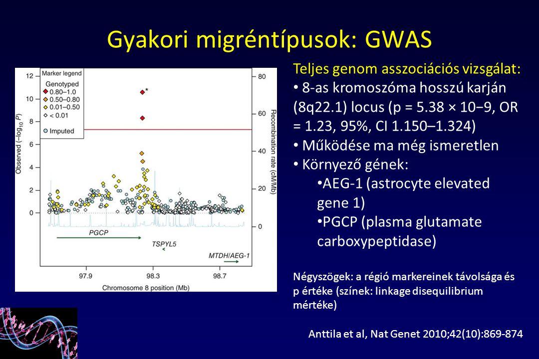 Gyakori migréntípusok: GWAS