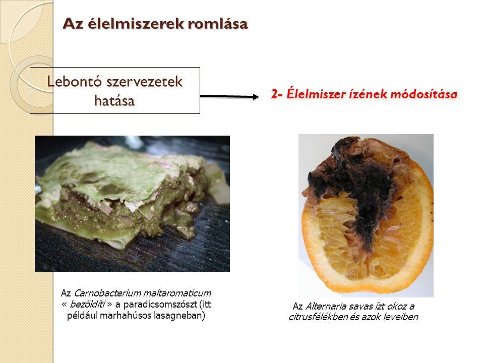 2- Élelmiszer ízének módosítása