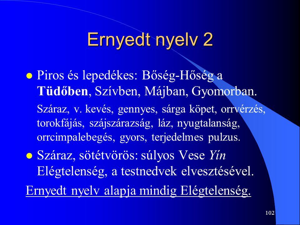 Ernyedt nyelv 2 Piros és lepedékes: Bőség-Hőség a Tüdőben, Szívben, Májban, Gyomorban.