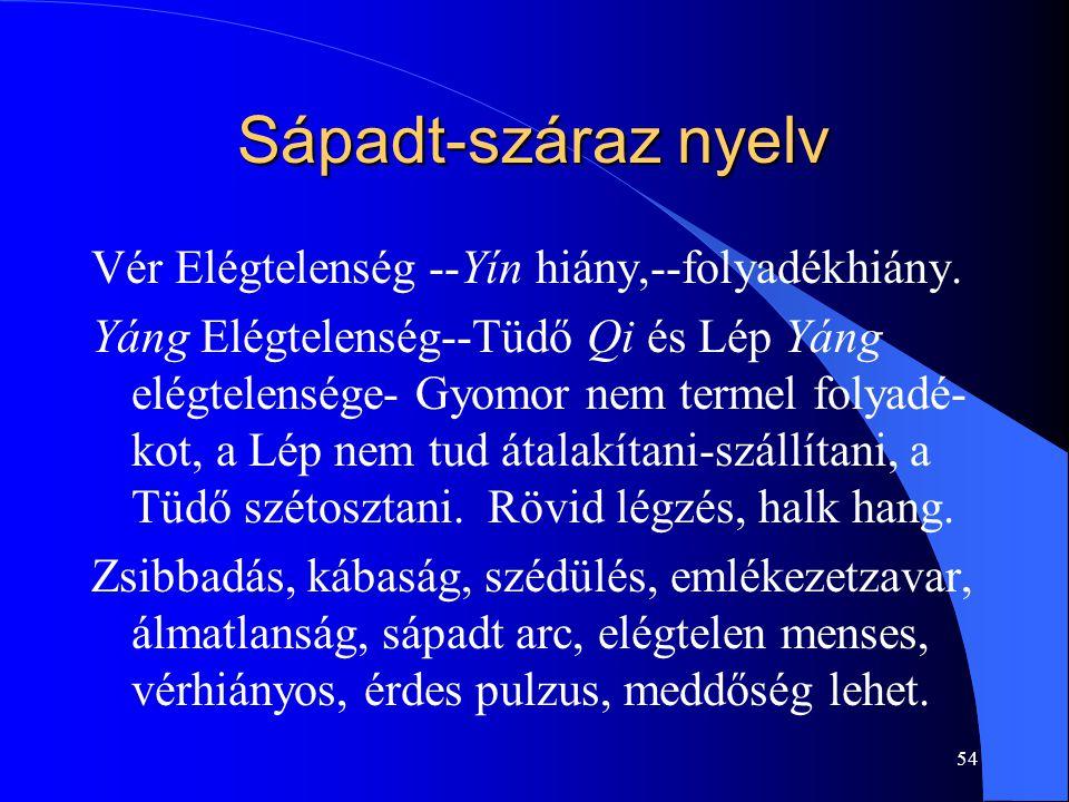 Sápadt-száraz nyelv Vér Elégtelenség --Yín hiány,--folyadékhiány.