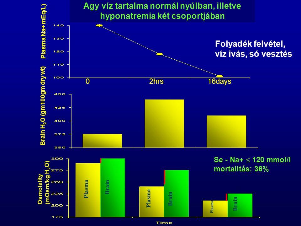 Agy víz tartalma normál nyúlban, illetve hyponatremia két csoportjában