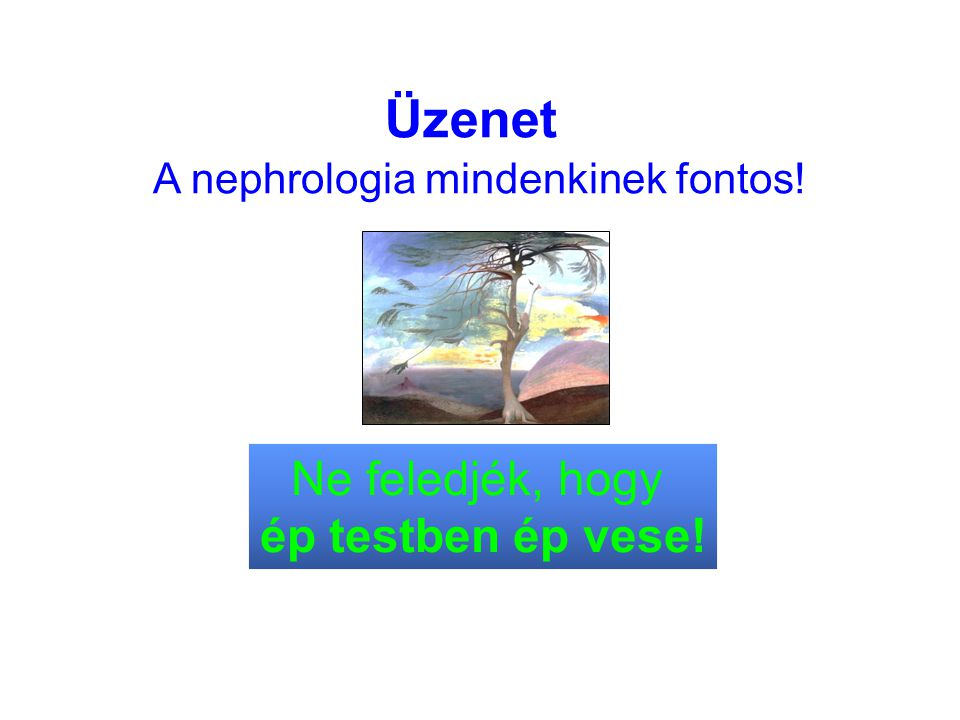 A nephrologia mindenkinek fontos!