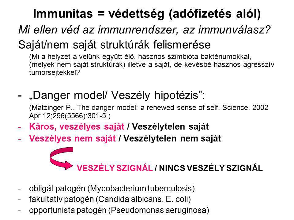 Immunitas = védettség (adófizetés alól)