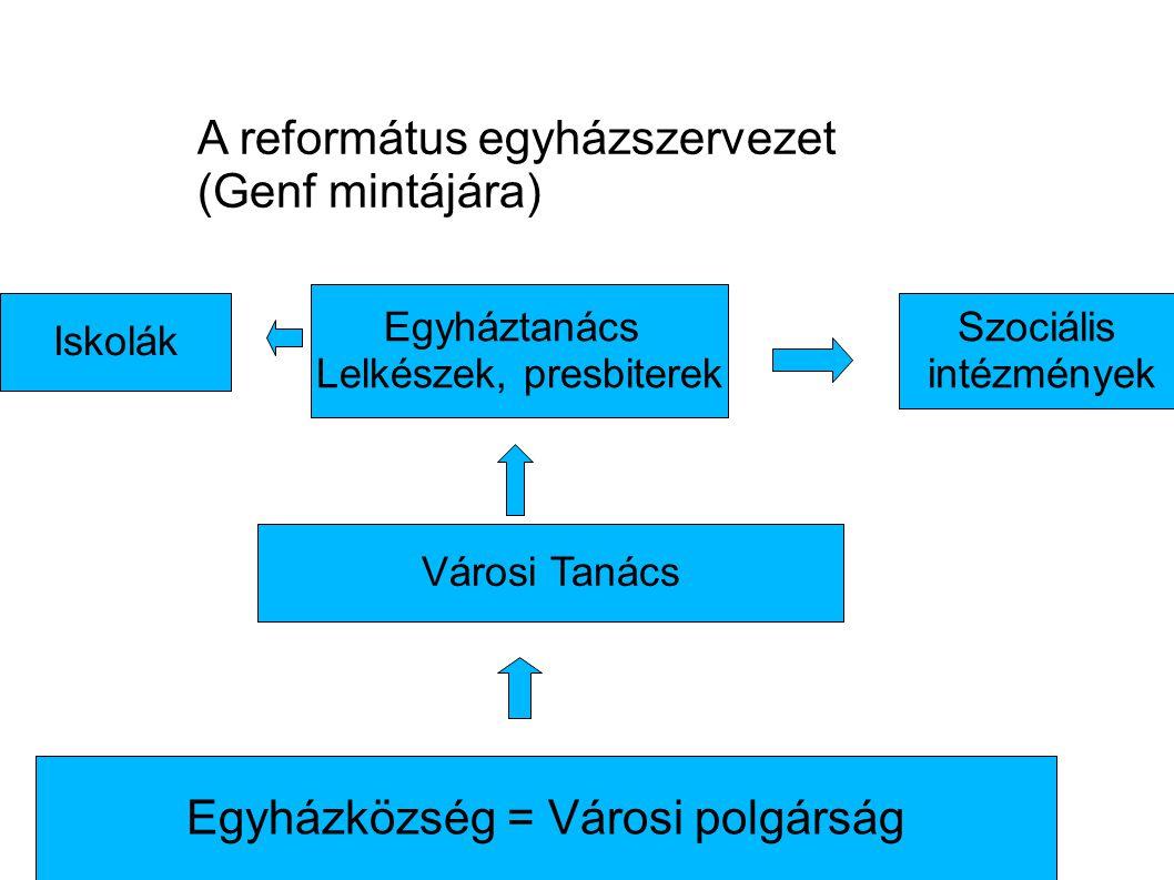 A református egyházszervezet (Genf mintájára)