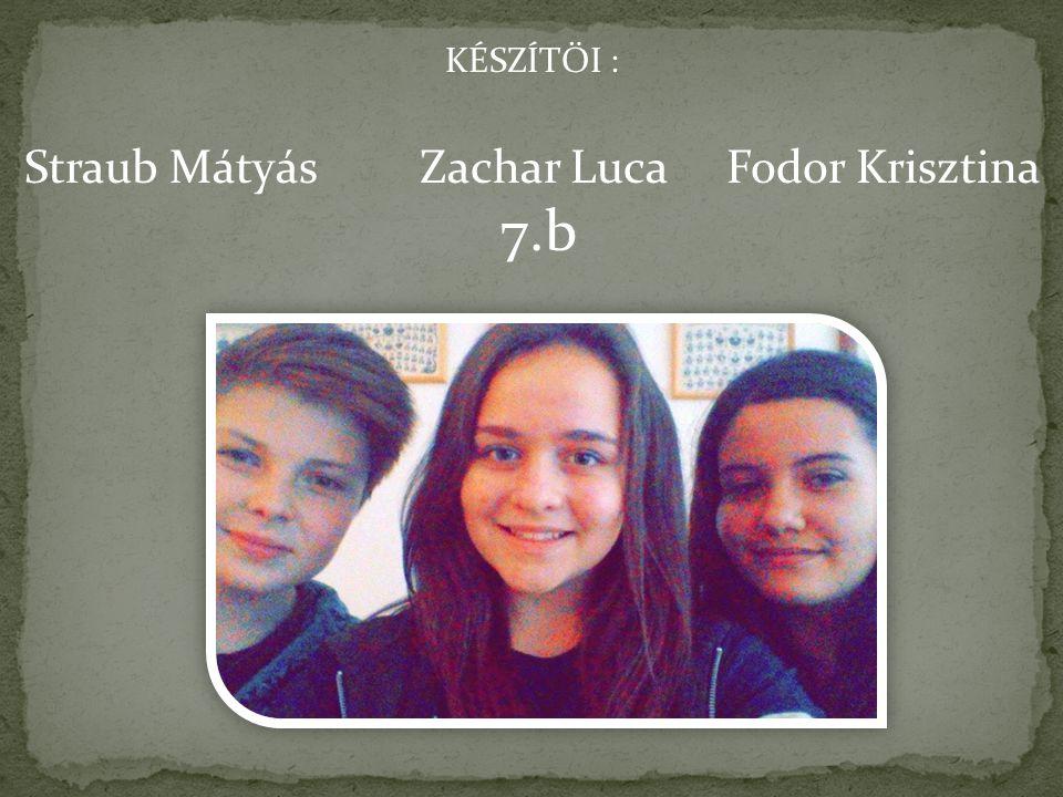 Straub Mátyás Zachar Luca Fodor Krisztina