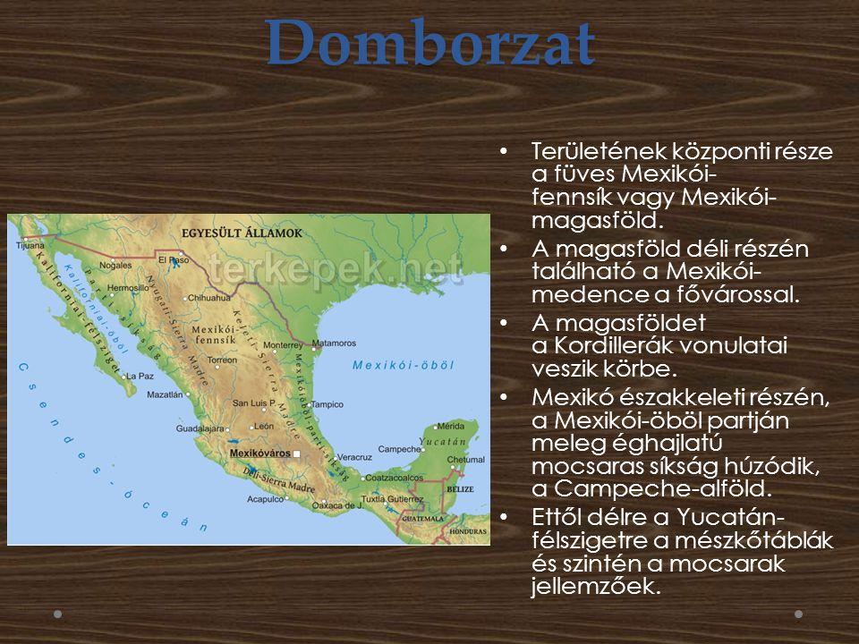 Domborzat Területének központi része a füves Mexikói-fennsík vagy Mexikói-magasföld.