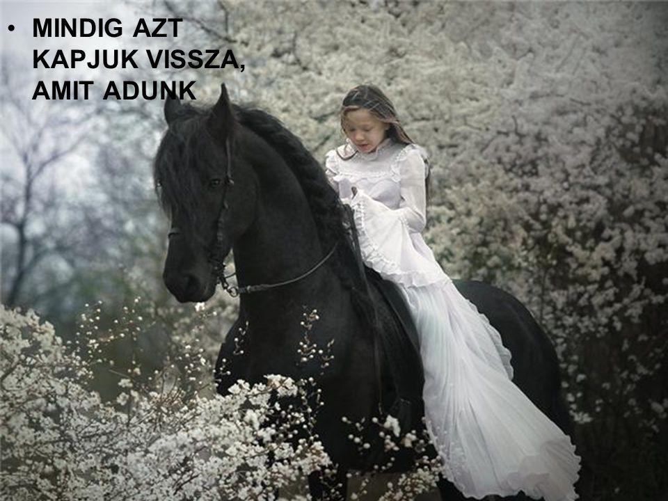 MINDIG AZT KAPJUK VISSZA, AMIT ADUNK