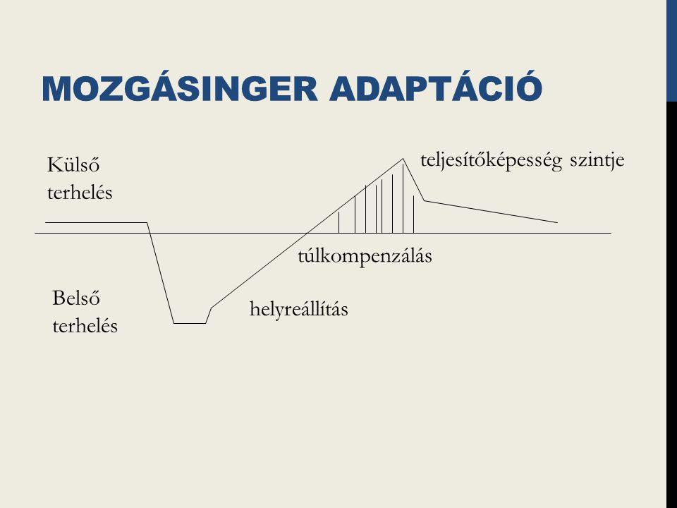 Mozgásinger adaptáció