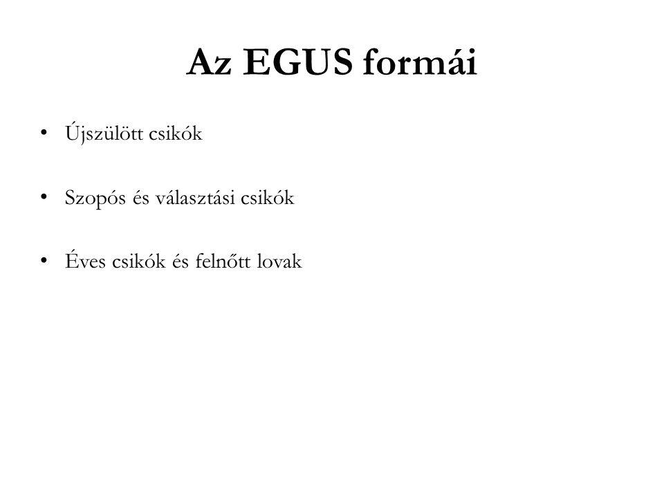 Az EGUS formái Újszülött csikók Szopós és választási csikók