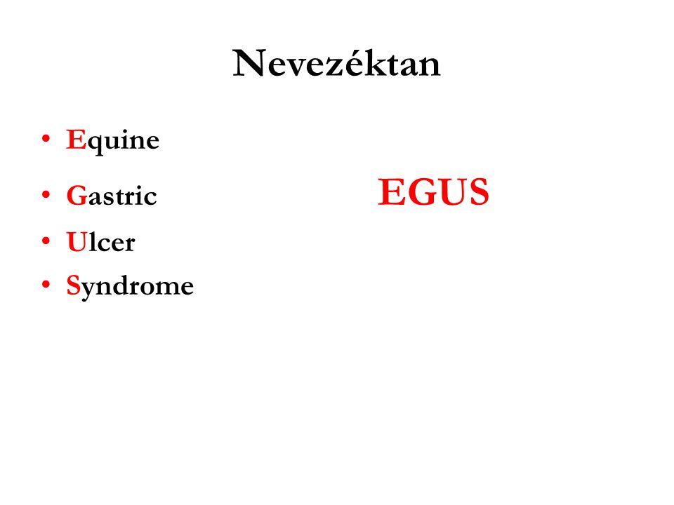 Nevezéktan Equine Gastric EGUS Ulcer Syndrome