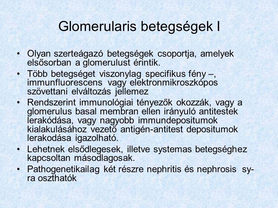 Glomerularis betegségek I