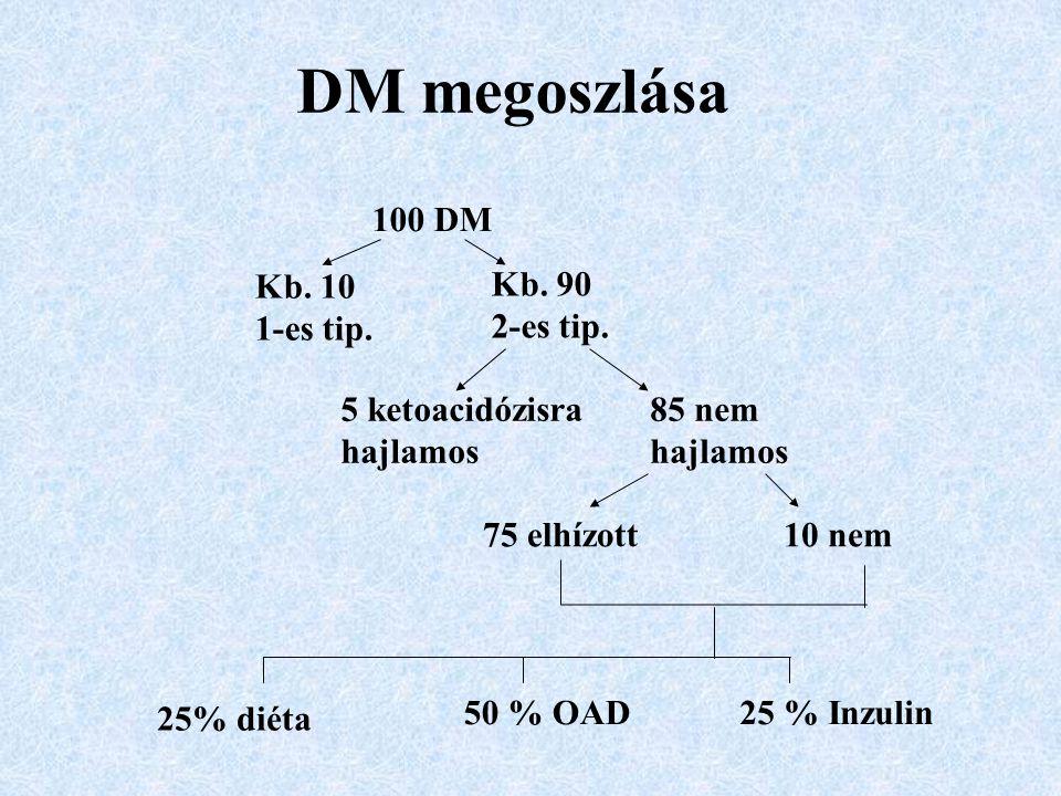 DM megoszlása 100 DM Kb. 10 1-es tip. Kb. 90 2-es tip.