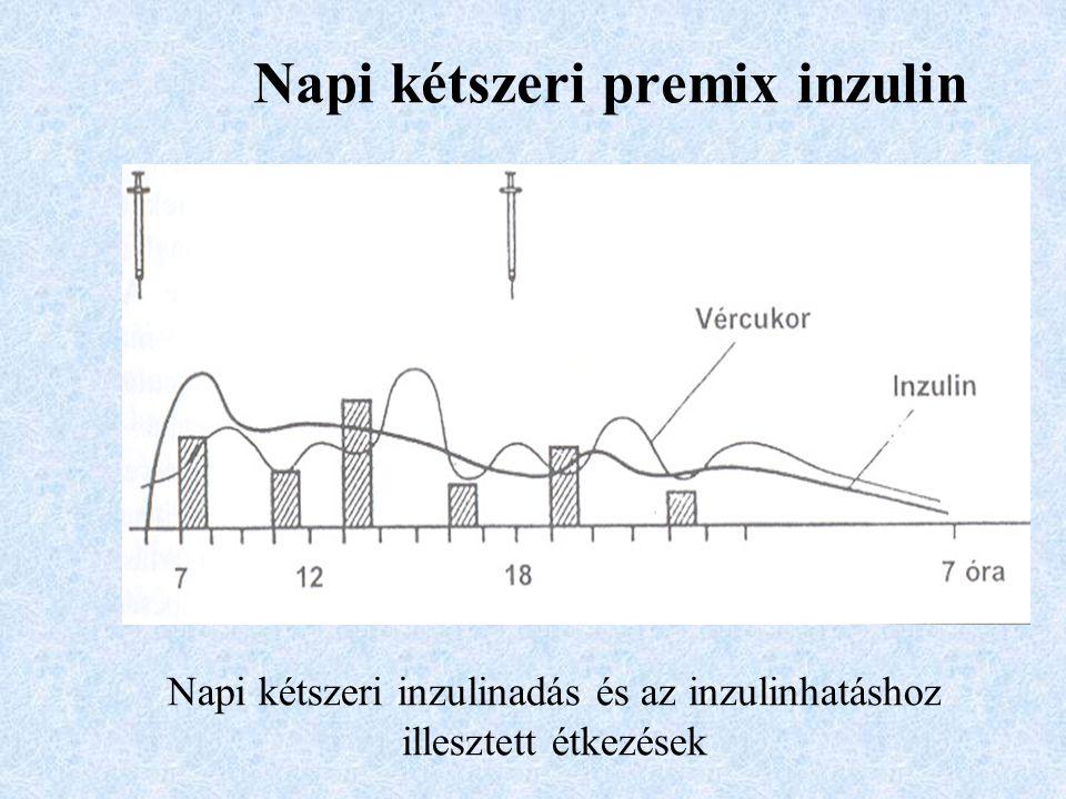 Napi kétszeri premix inzulin