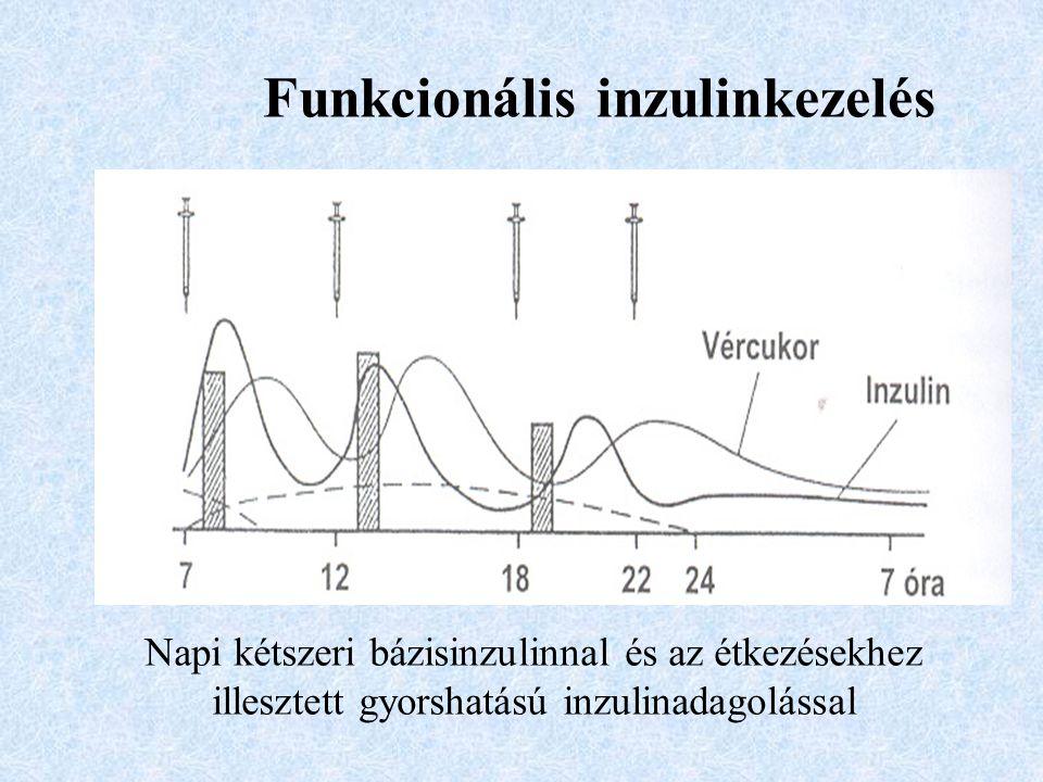 Funkcionális inzulinkezelés